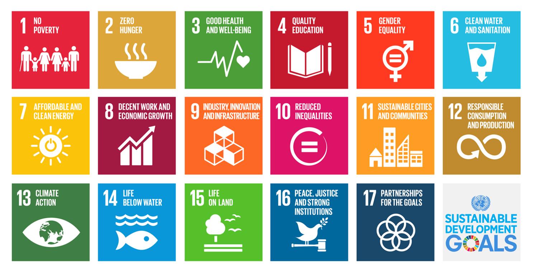 Sustainable Development Goals und ihre Umsetzung
